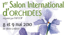 Salon International d'Orchidées. Nul besoin d'être un grand jardinier !